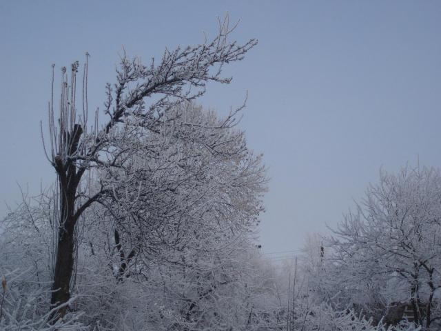 Зимняя сказка_3